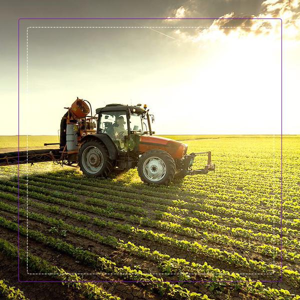 محصولات و نهاده های کشاورزی